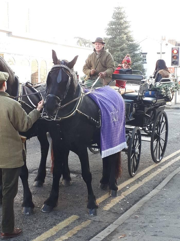 Horley Horse
